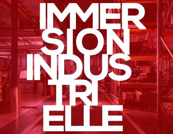 ImmersionindustrielleBF7-jpg