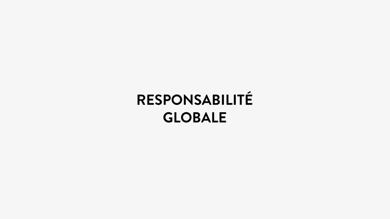 Responsabilite Globale